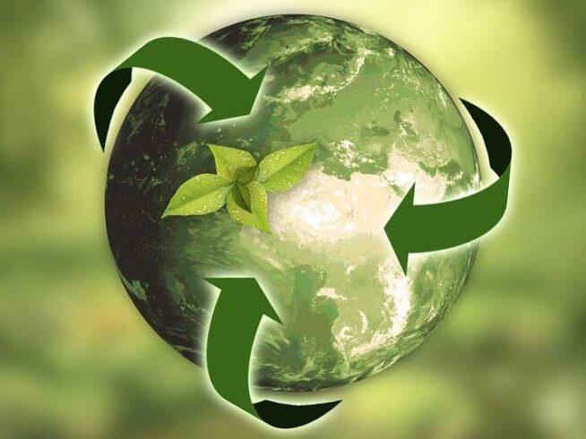 Sostenibilidad, envases biodegradables